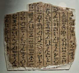 Papyrus Exhibit
