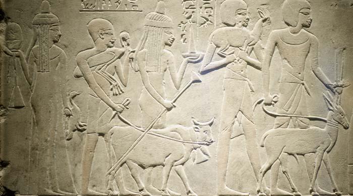 Relieve en la tumba de Merymery